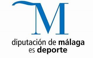 Ayuda recibida de la Diputación de Málaga