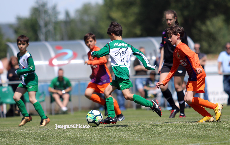 sdsFormulario Pre-Inscripción CD Juventud del Círculo Temporada 2020/2021