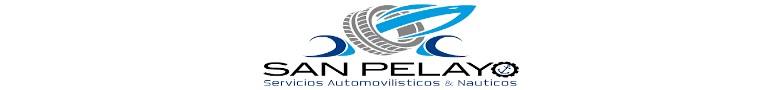 SERVICIOS AUTOMOVILISTICOS  Y NAUTICOS PELAYO S.L.