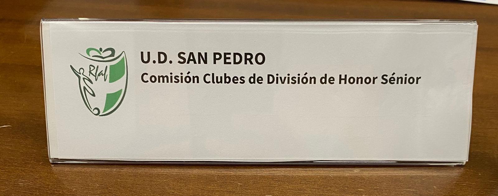 COMISION DE CLUBES DE DIVISION DE HONOR