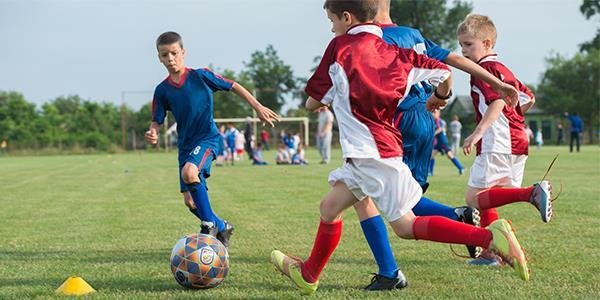 sdsGAUDEIX DE L'ESTALVI AMB FC. ENERGIA